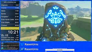 Breath of the Wild any% in 38:36