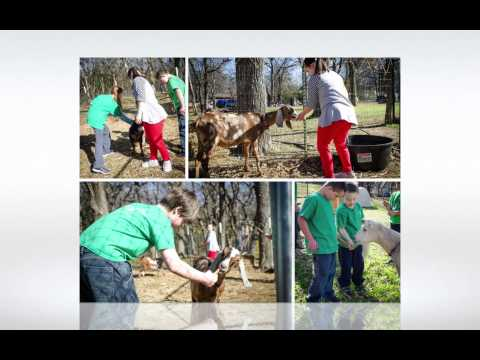 Green oaks School farm visit  HD 1080p