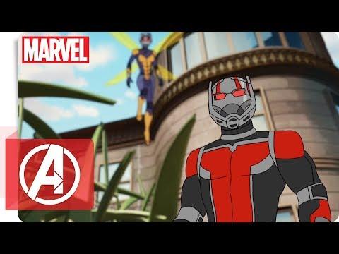 Avengers - Secret Wars: Ant-Man & Wasp   Marvel HQ Deutschland