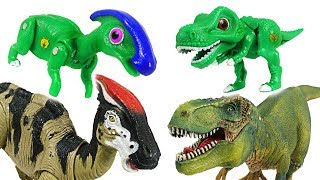 You'll be scared if I get angry! Dino Mecard tiny dinosaurs Parasaurolophus appeared! - DuDuPopTOY
