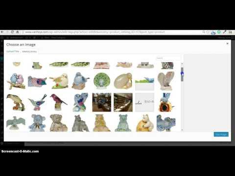 Intro to Wordpress Dashboard for e-commerce site