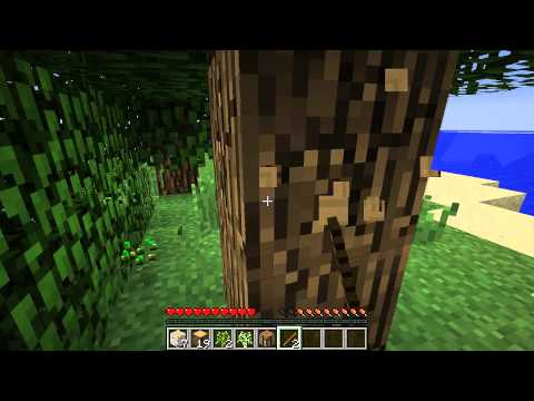 Minecraft Let´s Play Together S1 E1  Der Beginn