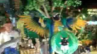 Vídeo 155 de Boi Caprichoso