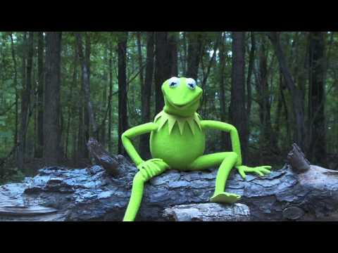 Kermit the Frog Takes the ALS Ice Bucket Challenge