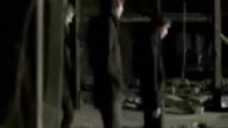 Watch White Lies Taxidermy video