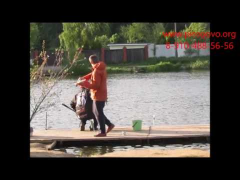 квадрат на ленинградке рыбалка
