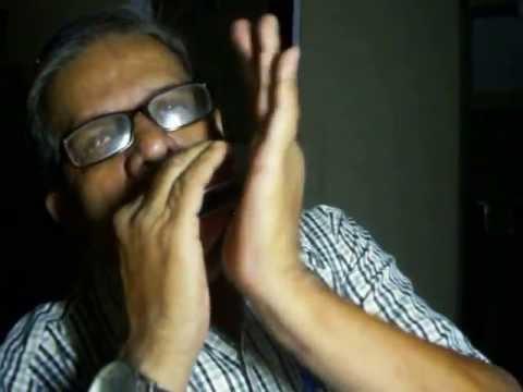 Yaad Kiya Dil Ne Kaha Ho Tum- Mouth Organ. Pushpendu Gupta video