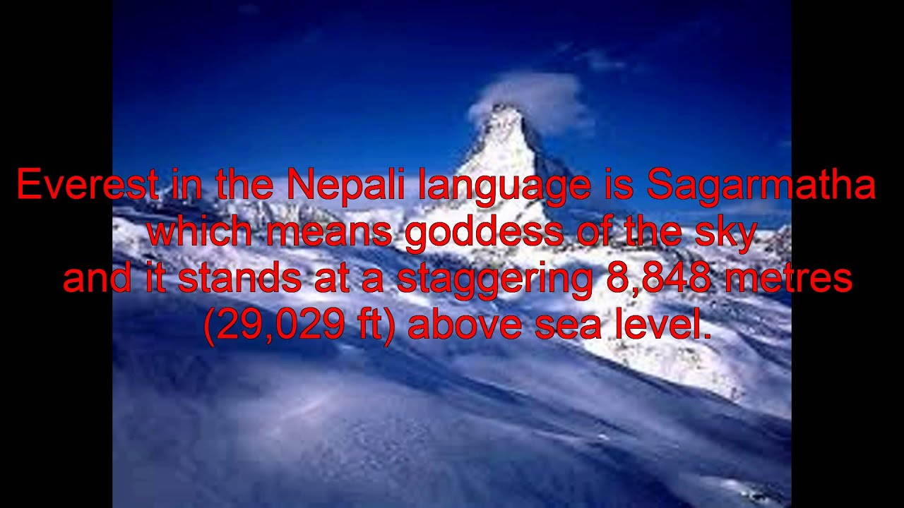 Essay on brain drain in nepal s