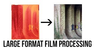LARGE FORMAT FILM PROCESSING | C41 | 5x4