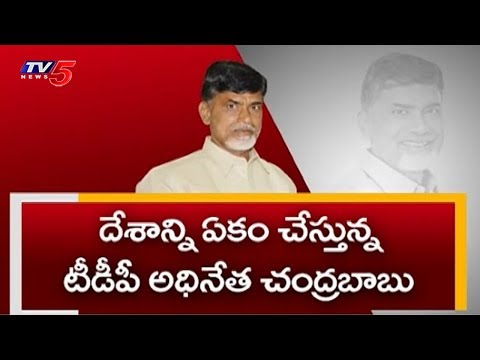 CM Chandrababu Focus On National Politics after Mahakutami | TV5 News