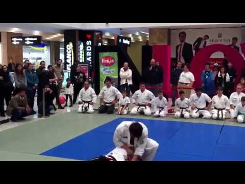 Demonstratie Okinawa Isshinryu Karate Iasi