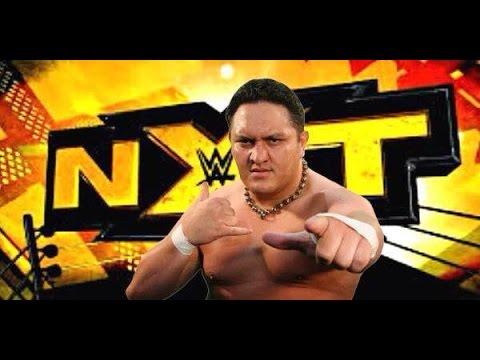 Will WWE Sign Samoa Joe?