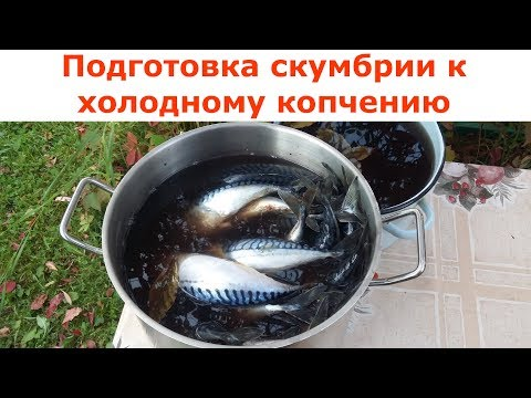 Приготовления для копчение рыбы в домашних условиях 52