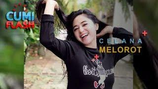 Wow Lagi Renang Celana Dewi Perssik Melorot Cumiflash 06 Desember 2018