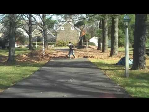 Leaf removal today, clean lawns all winter! Chris Orser Landscaping