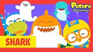 Baby shark, baby seal, and more Sea Animals | Pororo Shark Song | Friends Under the Sea