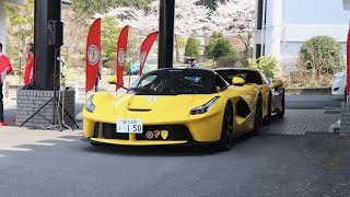 488 Pistas, LaFerraris, F50 and more!! Ferrari Club Japan Brunch 2019
