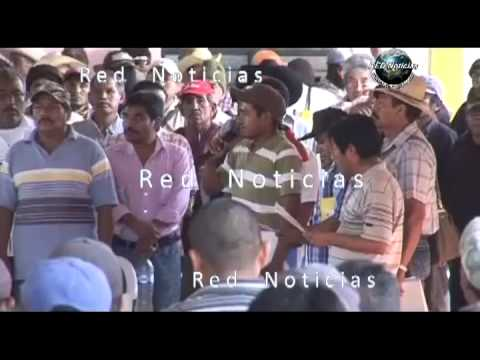 RED Noticias - Presentan a 54 detenidos en Ayutla de Los libres