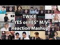 "TWICE ""YES or YES"" M/V ""Reaction Mashup"""