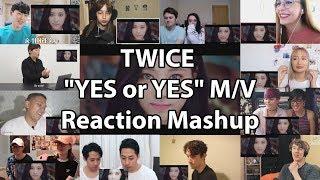 """TWICE """"YES or YES"""" M/V """"Reaction Mashup"""""""