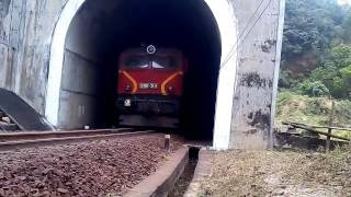 Freight train AROANG 339 - 319 run into tunnel