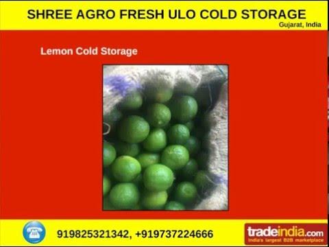 SHREE AGRO FRESH ULO COLD STORAGE, GUJARAT, INDIA