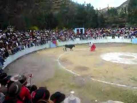 corrida de toros en pillpinto cusco peru
