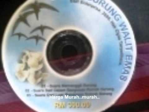 Suara Burung Walit walet sriti video