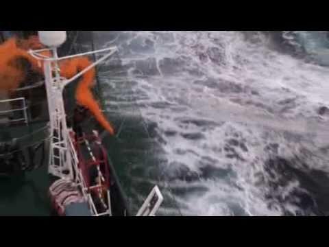 Bob Barker activists onboard a zodiac throw a smoke bomb on the Yushin Maru No. 2