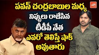 The TDP Leader Behind Pawan Kalyan And AP CM Chandrababu's Clash