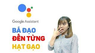 Trợ lý Google Assistant Tiếng Việt có gì mà người ta mê dữ vậy?