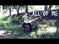 ALL OF ME JOHN LEGEND VIOLIN COVER BY ROGER POULMANN mp3