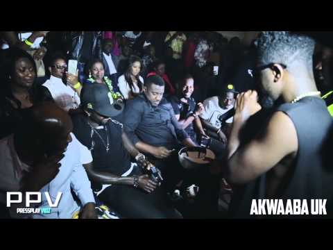 SARKODIE & AMAKYE DEDE SUMMER Concert 2014 Highlights by Akwaaba...