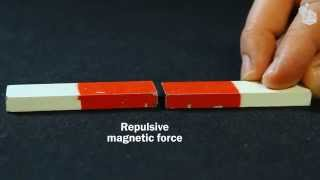 Video Lab: Magnetic forces