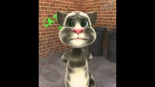 Kutchi Gujarati Jokes - Talking Tom Cat
