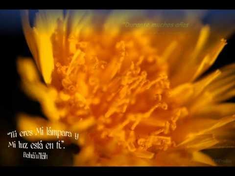 Христианские песни - Dime Senor