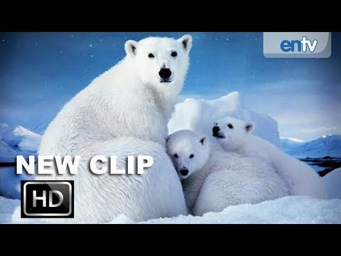 To The Arctic 3D Official Trailer 2 [HD]: Meryl Streep & Family Of Polar Bears Surviving The Arctic