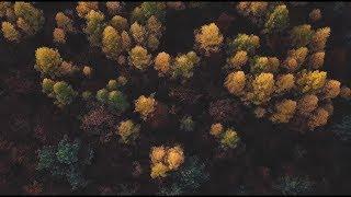 AUTUMN || Jeseň