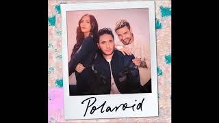 Jonas Blue, Liam Payne, Lennon Stella - Polaroid  ( 1 Hour )