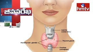 Ayurvedic Treatment For Thyroid | Star Ayurvedic By DR.Manohar | Jeevana Rekha | hmtv