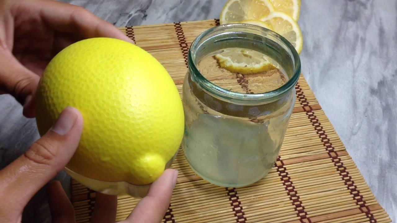 Как сделать из лимона освежающий напиток 842