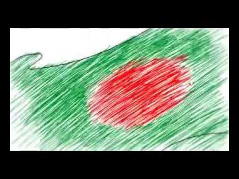For Bangladesh Cricket team-BIMT
