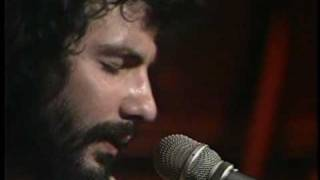 Watch Cat Stevens If I Laugh video