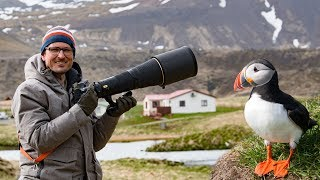 Bird Photography in Iceland ???????????? Whats in my Bag
