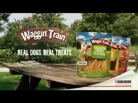 TV Spot - Purina - Waggin' Train - Real Meat Dog Treats - Chicken Jerky