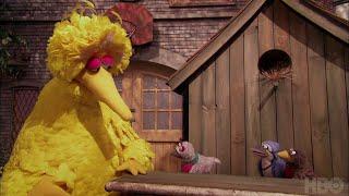 Sesame Street Season 48: The Good Birds Club