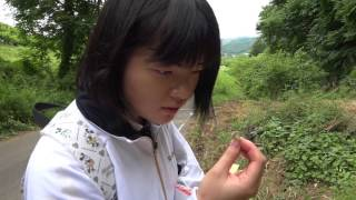 トシミちゃんシリーズ 毒キノコ探し