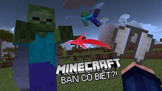 Đừng Bao Giờ Đưa Cho Zombie Một Cái Cánh Rồng Elytra Trong Minecraft PE ( MCPE ) !!!