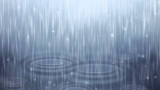 Nature Sounds Rain Sounds One Hour For Sleeping Sleep Aid For Everybody