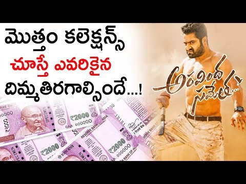 Aravinda Sametha Movie Collections Report | Jr NTR | Pooja Hegde | Trivikram | Tollywood Nagar